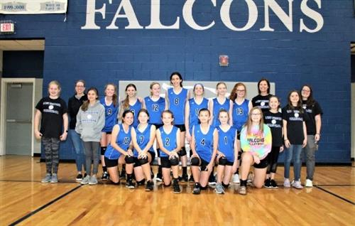 Girls Volleyball Group